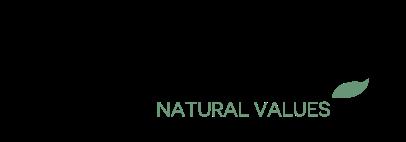 logo STGNATURE